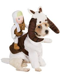 23 star wars dog costumes straight from a galaxy far away photos