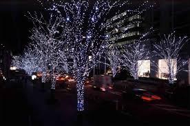 solar christmas light projector christmas lovely outdoor light projectors christmas best of