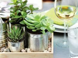 plante cuisine decoration décoration de table diy conserves pot plantes plante interieure