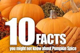 www pumpkin 10 facts you might not know about pumpkin spice san francisco bay