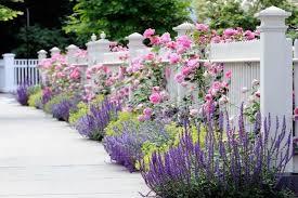 small garden border ideas lunardig info