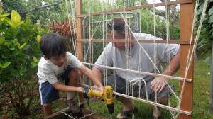 trellis ideas how to build a trellis for grape vines youtube
