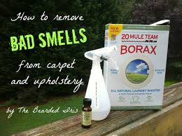 Remove Cat Urine From Sofa How To Remove Bad Smells From Carpet And Upholstery The Bearded Iris