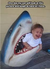 Shark Attack Meme - baby shark attack memes com too funny pinterest baby shark