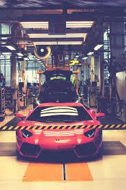 lamborghini factory 342 best lamborghini images on pinterest car dream cars and
