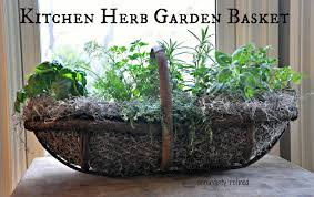 kitchen herbs serendipity refined blog small space portable gardens herbs and