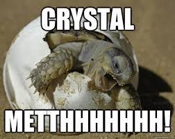 Crystal Meth Meme - crystal metthhhhhhh turtle meth quickmeme