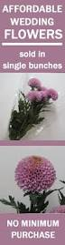 Corsage Prices Best 25 Corsage Prices Ideas Only On Pinterest Discount Flowers