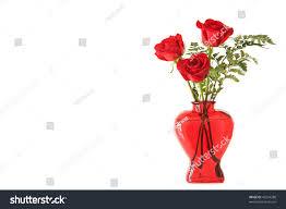 Long Stem Rose Vase 3 Long Stem Red Roses Red Stock Photo 45244288 Shutterstock