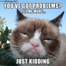 Good Meme Grumpy Cat - grumpy cat well done on your award also ed sheeran wore your