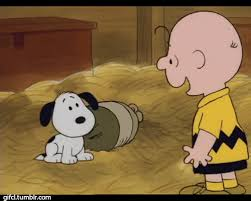 Charlie Brown Memes - the moment charlie brown adopted snoopy 3 peanuts know your meme