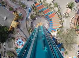 falcon s fury set to open at busch gardens theme park in ta