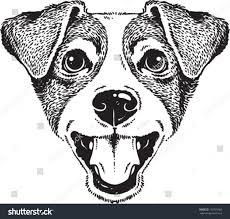 dog head sketch by