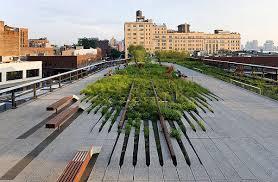 download best landscape architects solidaria garden