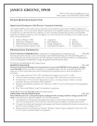 Sample Executive Resume Format by Sample Resume Format For Hr Executive Free Resume Example And