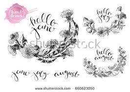meadow grass wreath hello august lettering stock vector 454708699