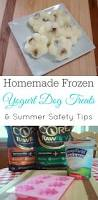 Diy Dog And Cat Treats by Frozen Yogurt Dog Treats Retro Housewife Goes Green