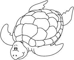 imagenes animales acuaticos para colorear recursos para el aula animales marinos para colorear