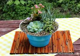 how to build and plant a succulent garden hoosier homemade
