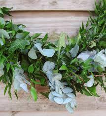 soft ruscus eucalyptus garland fresh foliage swag tregothnan