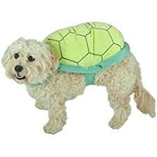 Target Dog Halloween Costumes Amazon Zack U0026 Zoey Polyester Turtle Dog Costume Small Pet