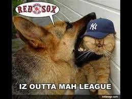 Yankees Suck Memes - yankees suck beer koozie youtube