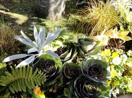 others front yard landscaping ideas ravenna gardens terraced