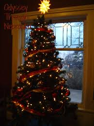 christmas trees lincoln ne home design inspirations