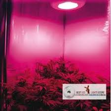 ufo led grow light commercial 90w ufo led plant grow light 3w chip for indoor