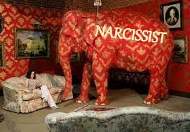 elephant in the living room narcissism is the elephant in the living room after narcissistic abuse