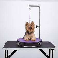 dog grooming tables for small dogs this master equipment small pet grooming table saves space and