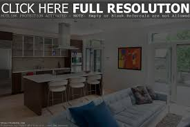 Kitchen With Living Room Design by Perfect Small Kitchen Living Room Design Ideas For Your Interior