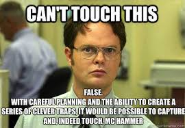 Can I Touch It Meme - can t touch this false with careful planning and the ability to