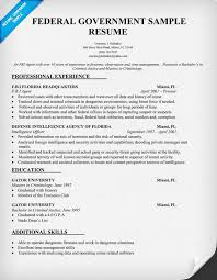 Example Of Government Resume by Government Resume Examples Examples Of Government Resumes
