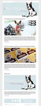 best newsletter design how to design an email newsletter template in 7 simple steps