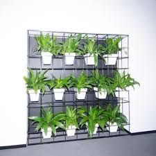 Best Plants For Vertical Garden - prepossessing 80 vertical garden ideas australia design