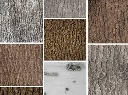 articial bark and custom artificial tree fabrication