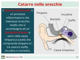 prurito interno orecchie nelle orecchie sintomi cause terapia e rimedi naturali