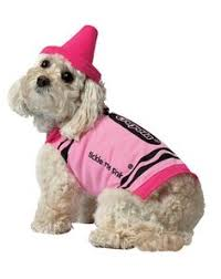 Cute Dog Halloween Costumes 16 Delightful Photos Dogs Amazing Halloween Costumes