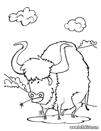 buffalo coloring pages hellokids com