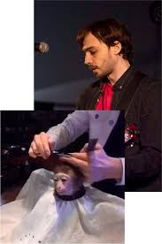 lil u0027 monkey fella monkey haircut know your meme