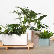 planter box ideas landscape industrial with container plants