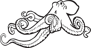 free animals octopus coloring pages for preschool preschool crafts