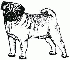 pug coloring pages christmas pug coloring pages printable pug