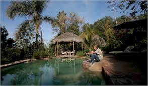 Pools Backyard From Europe A No Chlorine Backyard Pool The New York Times