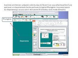 bureau d ordre et d emploi plan etape 1 sélection des espèces et des caractères à étudier