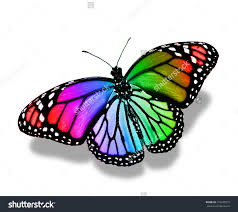 colorful butterflies search quilts i