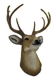 amazon com 8 point buck deer head bust wall hanging home u0026 kitchen