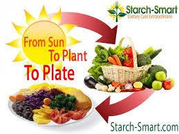 what does a plant based dinner plate look like drcarney com blog