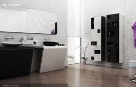 contemporary bathroom design tips cozyhouze com